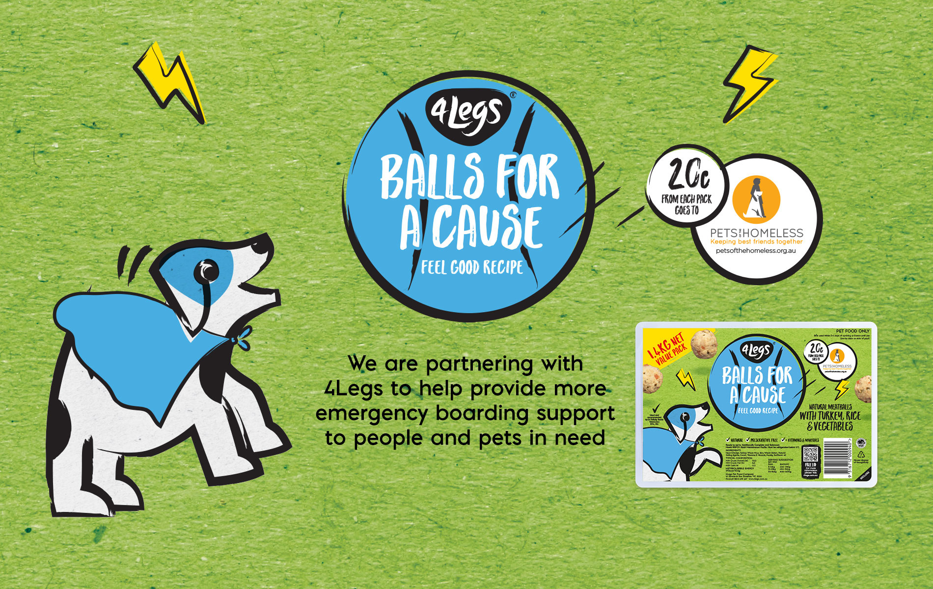 Pets of the Homeless Australia - Ball For A Cause